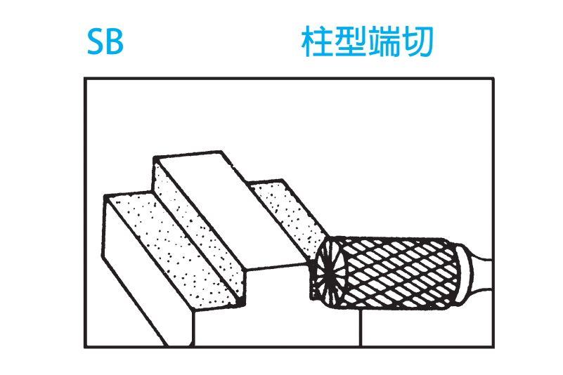 CCL-Model-SB