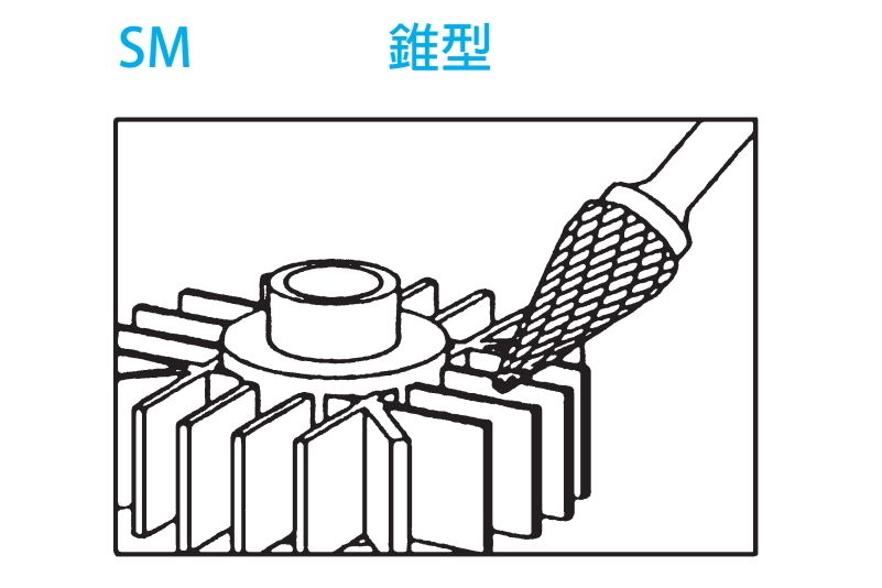 CCL-Model-SM